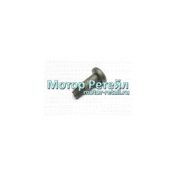 Болт успокоителей 406.1006096-20